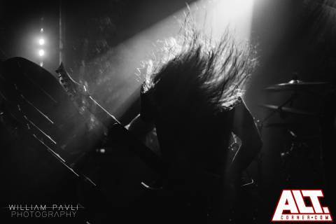 Betraying the Martyrs (10)