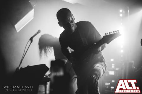 Betraying the Martyrs (7)